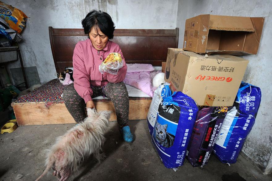 mujer salva perros 14