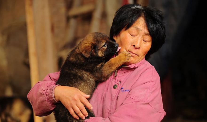 mujer salva perros 19