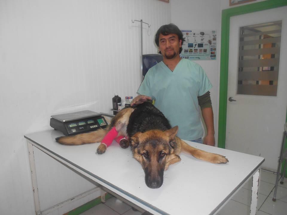 yuli operada doc