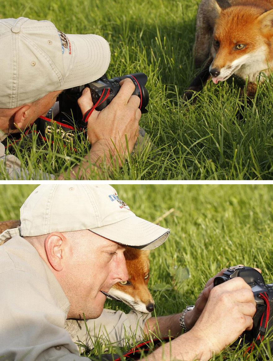 animales fotografos 1