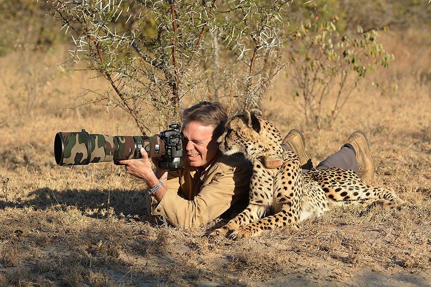 animales fotografos 2