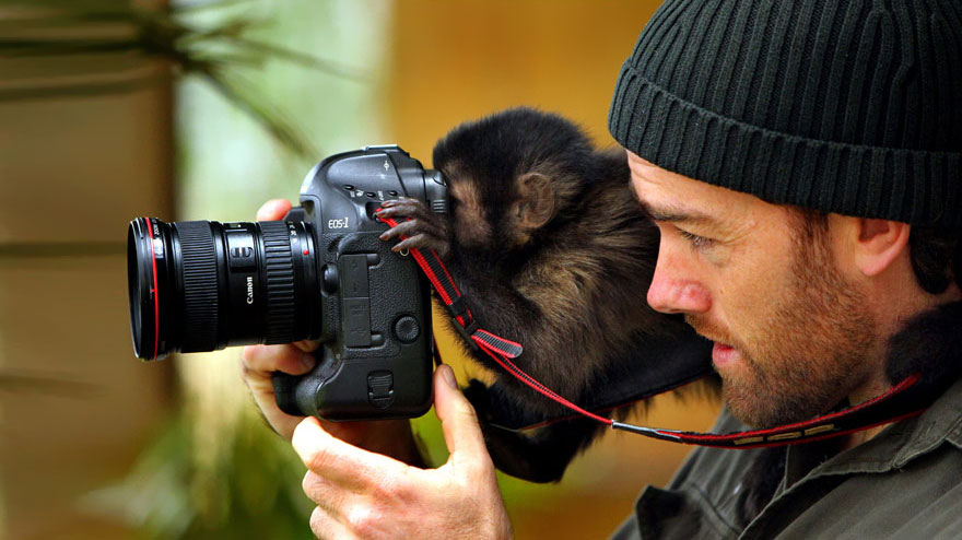 animales fotografos 5