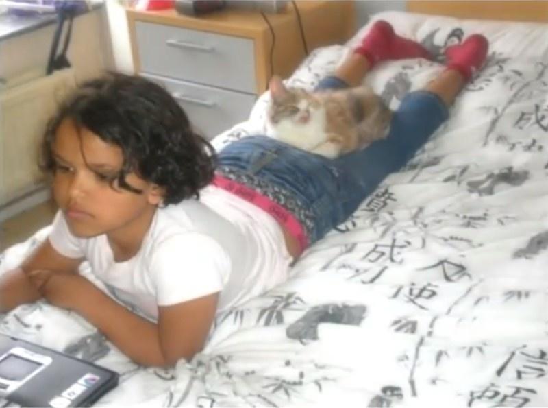 gatito desfigurado 9
