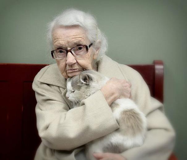 gatos adultos adoptados 1
