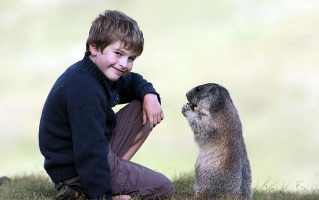 Matteo-marmotas