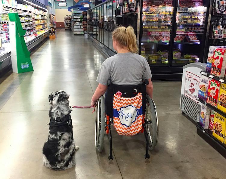 perro-ayuda