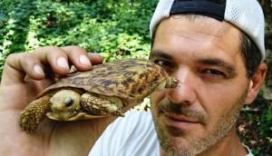 Frank-cuesta-tortuga - copia