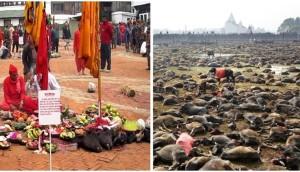 Prohibido-festival-nepal2
