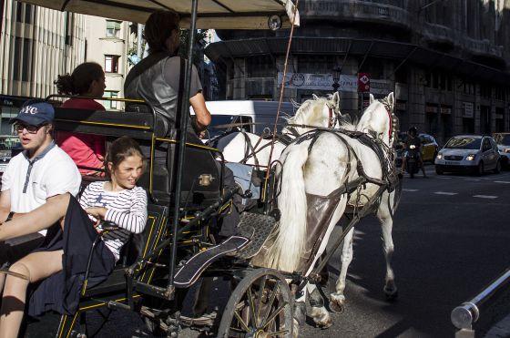 carro-caballos