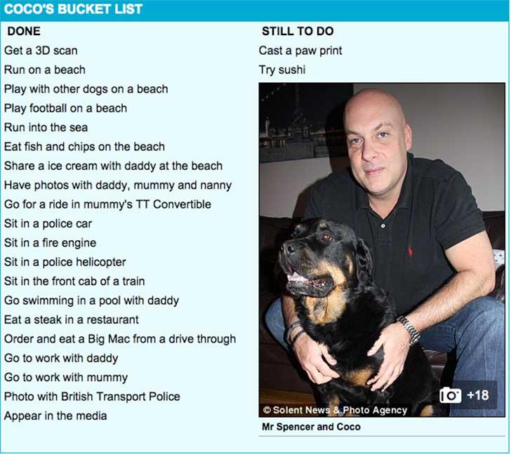 coco bucket list 3