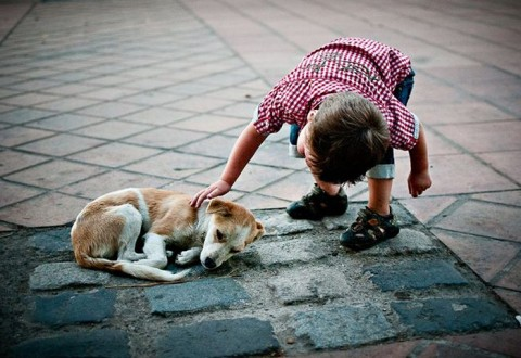 Niño-con-perro-abandonado