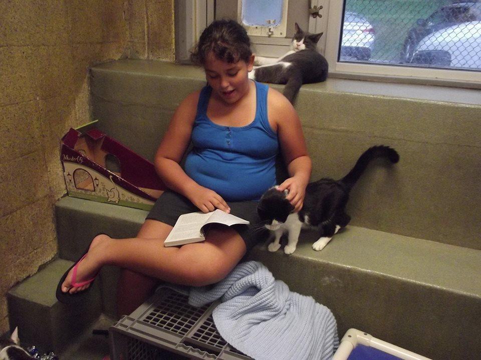 niños leen a gatos del refugio 4