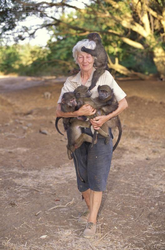 rita-miljo-babuinos