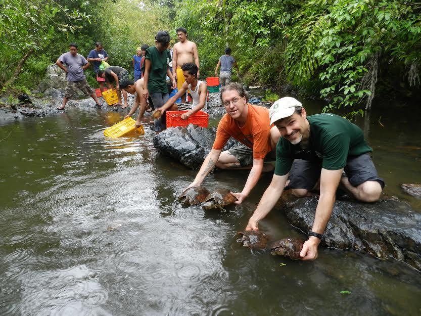 tortugas rescatadas 4