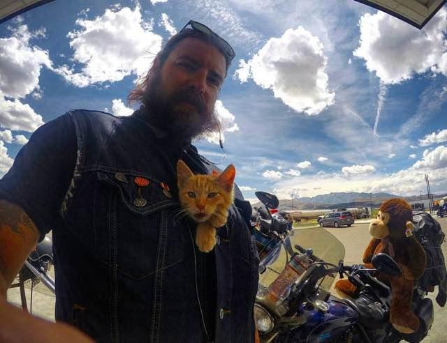 motorizado-rescata-gato6