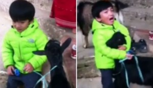 niño-protege-cabra