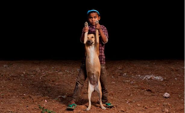 niños huerfanos adoptan perros 5