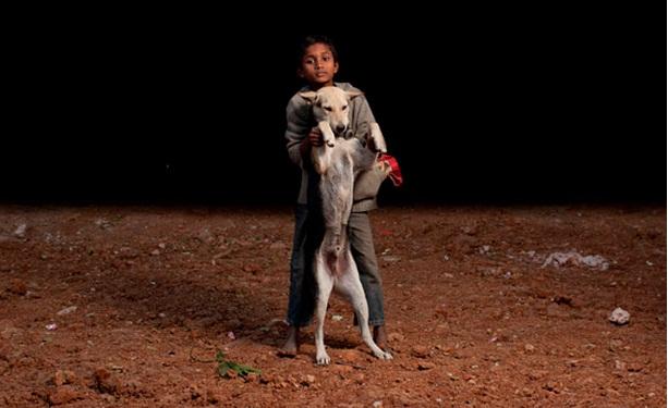 niños huerfanos adoptan perros 8