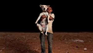 niños huerfanos adoptan perros 9