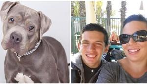 perro-ayuda-a-joven-especial-afecto