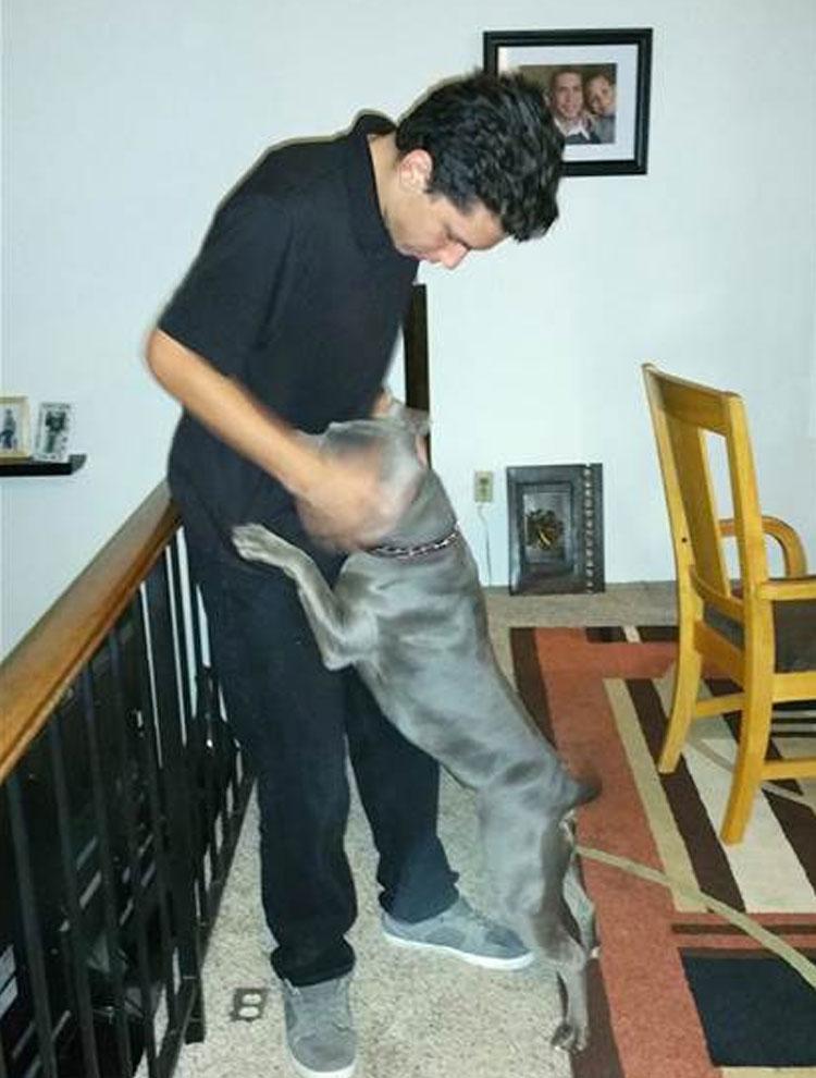 perro-ayuda-a-joven-especial4