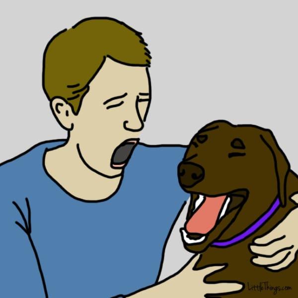lenguaje-de-amor-perros2