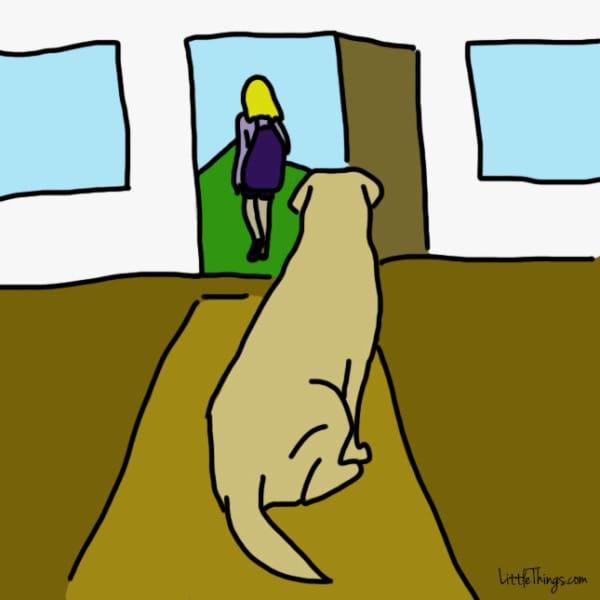 lenguaje-de-amor-perros6