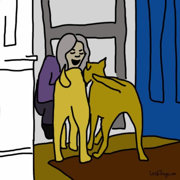 lenguaje-de-amor-perros7