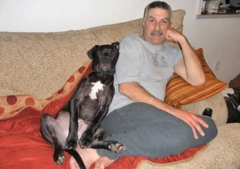 perros-patas-arqueadas-7