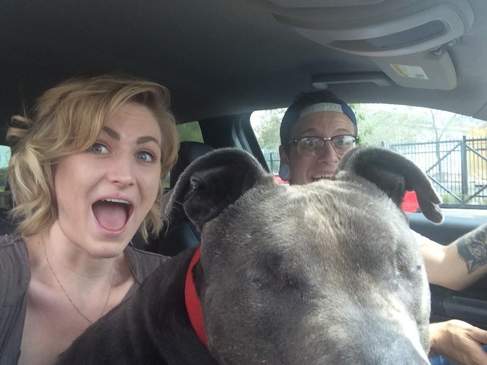 pit bull ciego adoptado 1