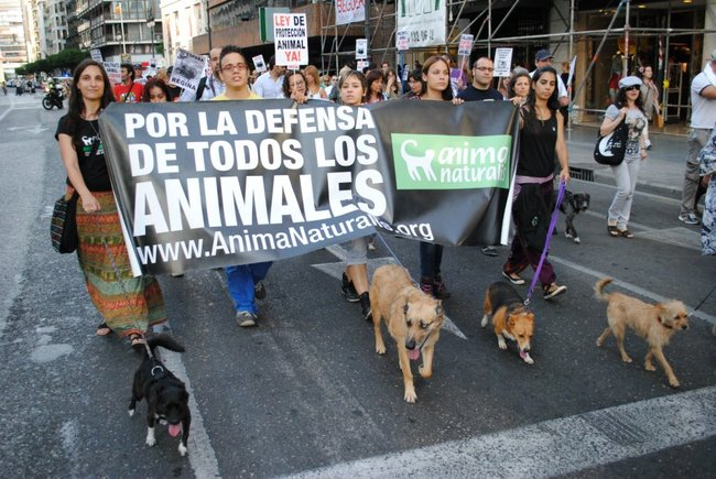 protesta-activistas-animales-espana-