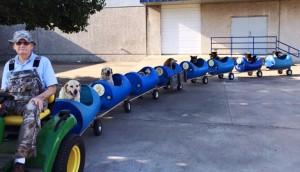 tren-perros1 - copia