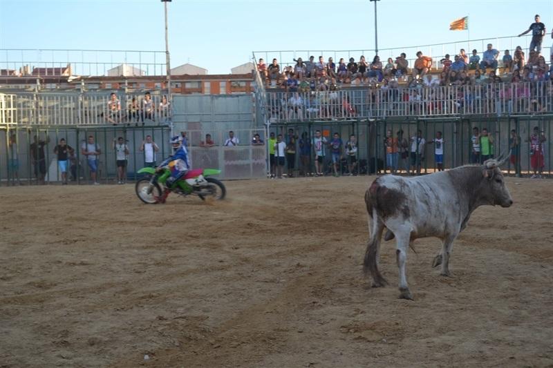 el-no-a-los-toros-gana-el-referendum-local-en-valencia2