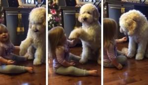 nina-entrena-a-su-perro