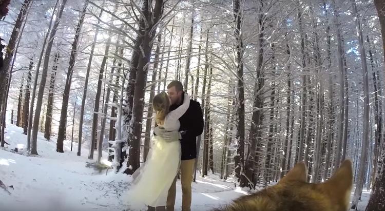 perro-graba-video-de-su-boda-