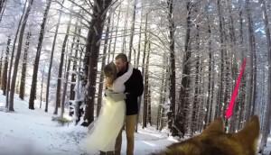 perro-graba-video-de-su-boda- - copia