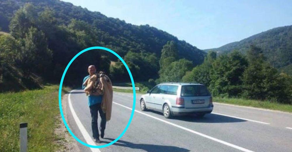 Detienen sus vehículos para rescatar una perrita pero ella sólo quería llevarlos hasta sus bebés