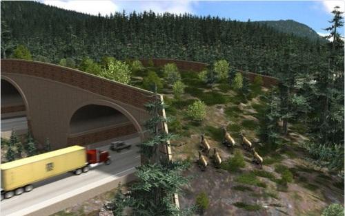 puente para animales 1