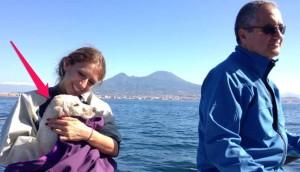 rescatan-perro-en-el-mar5