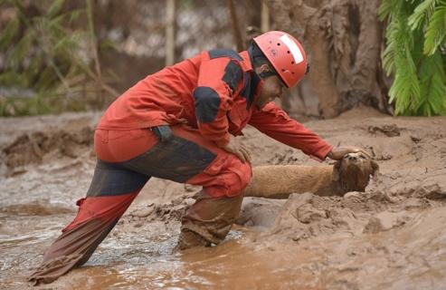 rescate-perro-en-desastre-minero-brasil4