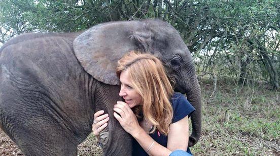 elefante-bebe-rescatado4