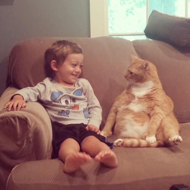 larry el gato guardian 1
