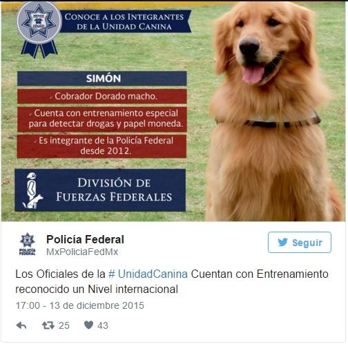 policia-rescata-perro-incendio1