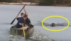 rescate-de-perro-río-helado