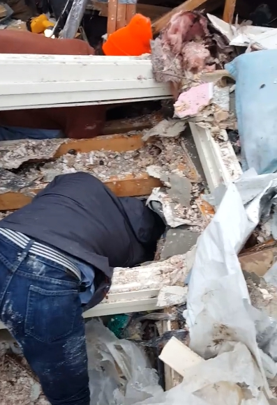rescate-de-perro-texas-huracan1