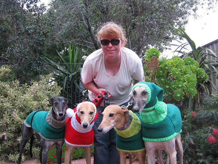 sweateres para perros 1