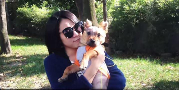 tuffy-perro-maltratado4