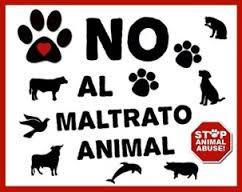 FBI contra maltrato animal 2