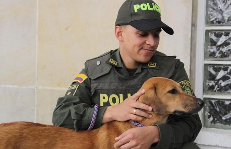 Policia Colombiano rescata a perro 3