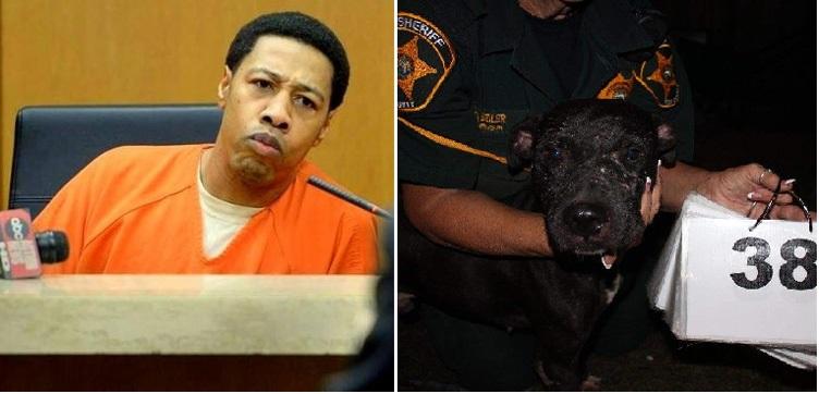 arrestado por pelea de perros 1